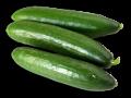 gurken